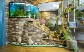 Как выбрать аквариум в квартиру