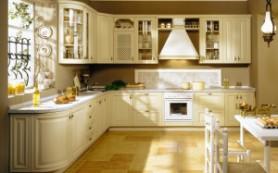 Выбираем антибактериальные средства для чистки кухни
