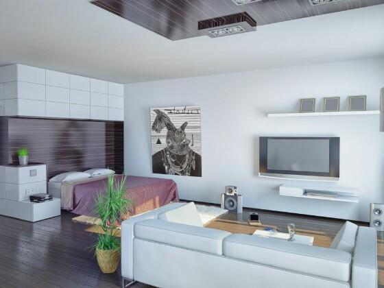 Организация пространства в квартире-студии