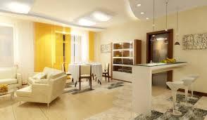В чем преимущества и недостатки модных квартир-студий?