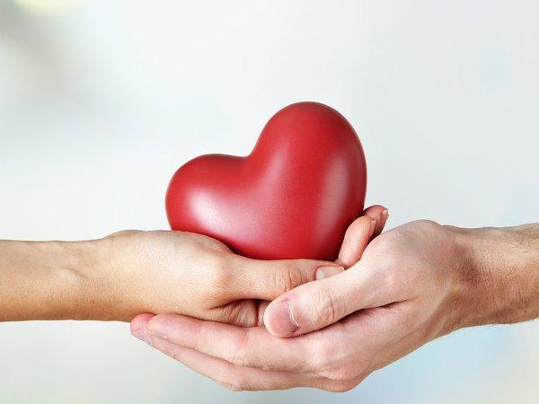 Какой должна быть доброта? Не поверите — профессиональной
