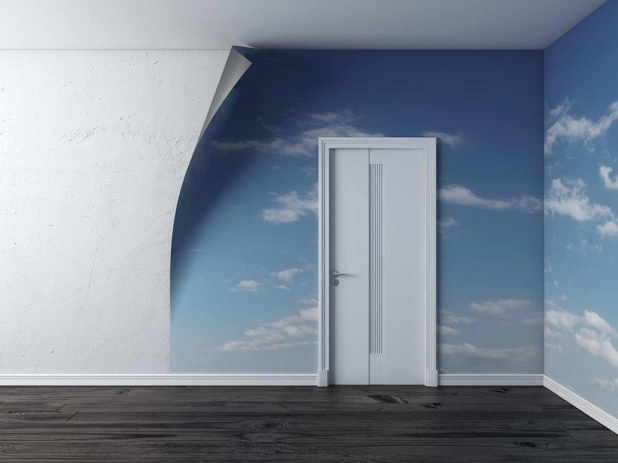 Все про светлые межкомнатные двери