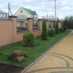 Рулонный газон - красота на участке за несколько часов