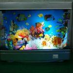 Выбираем аквариум - настоящий или искусственный?