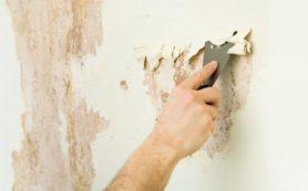 Для удаления со стен старых обоев все средства хороши