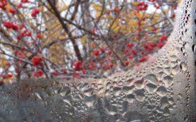 Избавляем пластиковые окна от конденсата