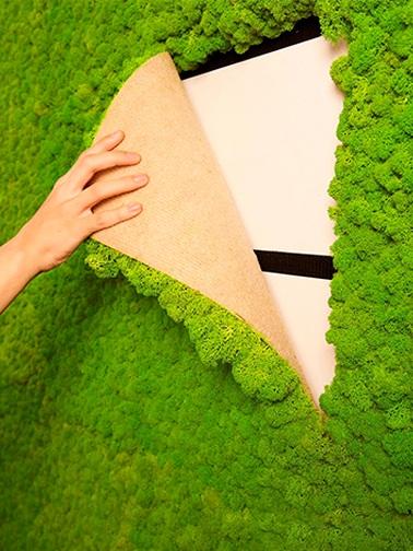 Полярный мох: не только еда для оленей, но и отделочный материал для суперсовременного интерьера