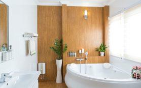 Как выбрать ванну: чугун или сталь