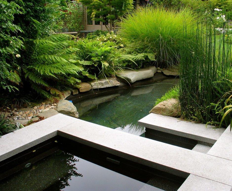 Как сделать ландшафтный бассейн или пруд на даче: 10 важных пунктов, идеи и советы