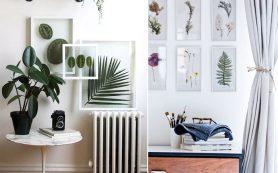 Как декорировать интерьер растениями: 5 полезных идей