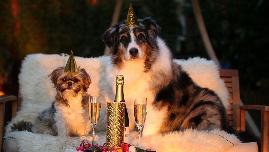 А Новый год скоро! Какие города России популярны у туристов в новогодние каникулы