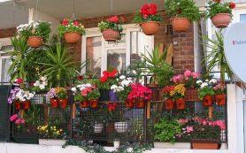 Дача на балконе: 7 шагов к загородному стилю