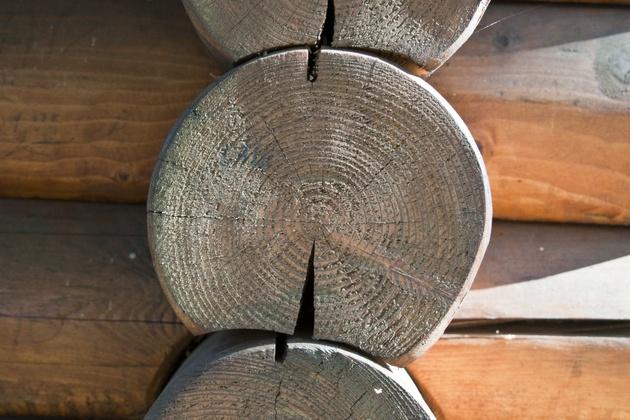 Преимущества древесины для строительства домов