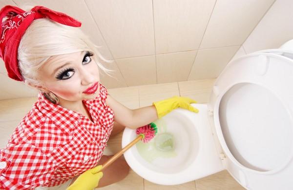 Чем и как почистить унитаз в домашних условиях