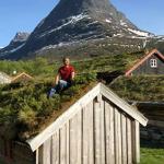 Личная Норвегия: как сделать травяную крышу в частном доме