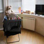Как быстро и эффективно убрать квартиру?