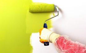 Подготовка бетона и гипсокартонных поверхностей под покраску